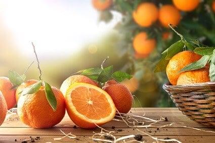 are oranges safe for hermit crabs?