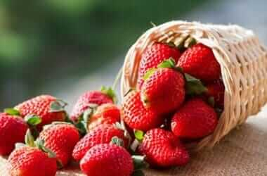 can a hermit crab eat strawberries?