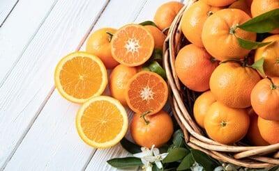 can hermit crabs have oranges?