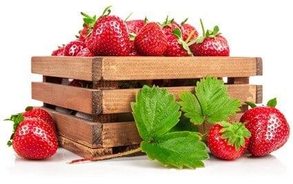 do hermit crabs like strawberries?